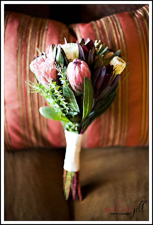 Bouquet of leucodendrons, banksias and proteas amongst gorgeous green leaves bound with creamy satin ribbon - nice but too flat