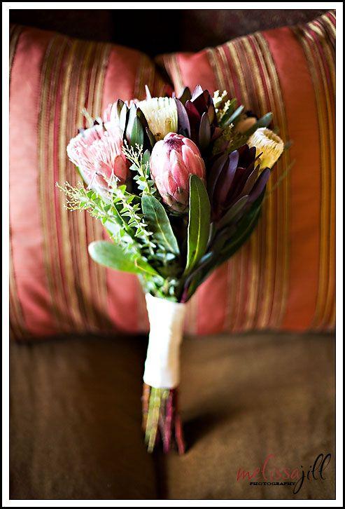 Beautiful native Australian flowers.