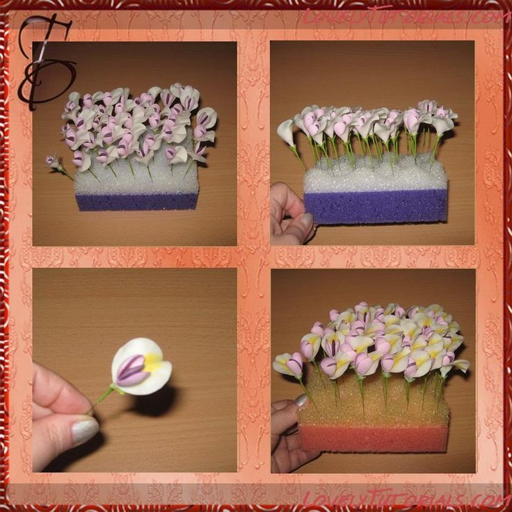 35 Best Wisteria Lodge Images On Pinterest: 26 Best Images About Fondant : Wisteria On Pinterest