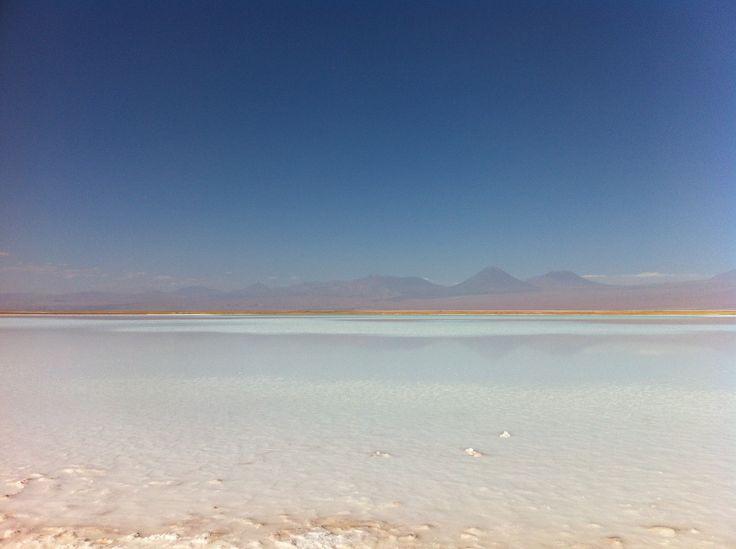 Salar del Carmen, Atacama, Chile