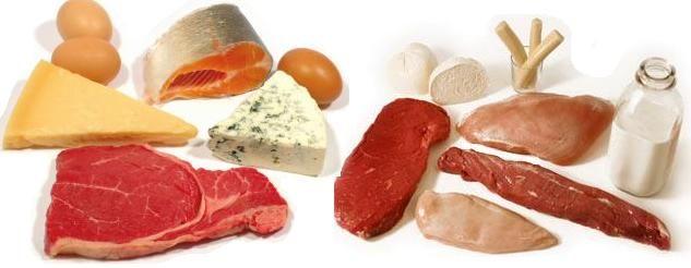 Os Músculos, a pele, o cabelo e as células cerebrais são apenas algumas das partes do corpo que são à base de proteínas. As estimativas sugerem que cerca de metade do peso seco do corpo humano é composto de proteína. Muitos dos alimentos que ingerimos contêm proteínas, especialmente alimentos de carne (frango, carne, cordeiro e peixe), e leguminosas como feijões e lentilhas. Estas proteínas são quebradas durante a digestão para libertar aminoácidos, ...