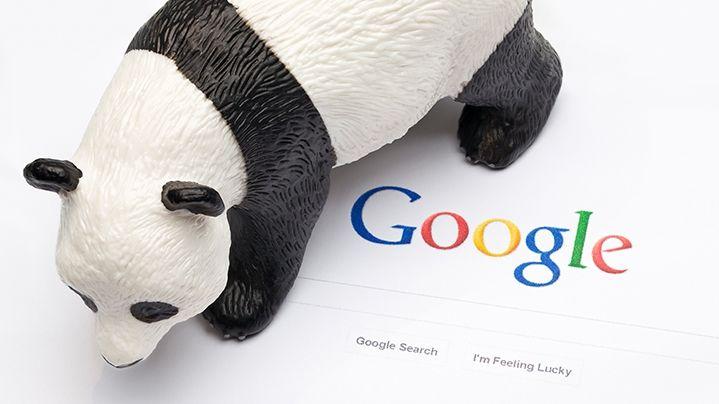 Google Panda 4.2 Güncellemesi