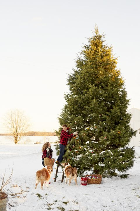 1965 Best Christmas Decorations Crafts Images On