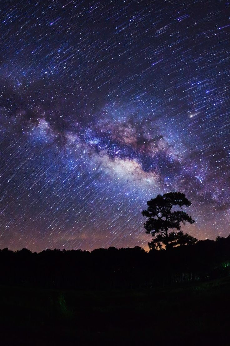 Milky Way at Phu Hin Rong Kla National Park, Phitsanulok - Thailand by Sarote Impheng