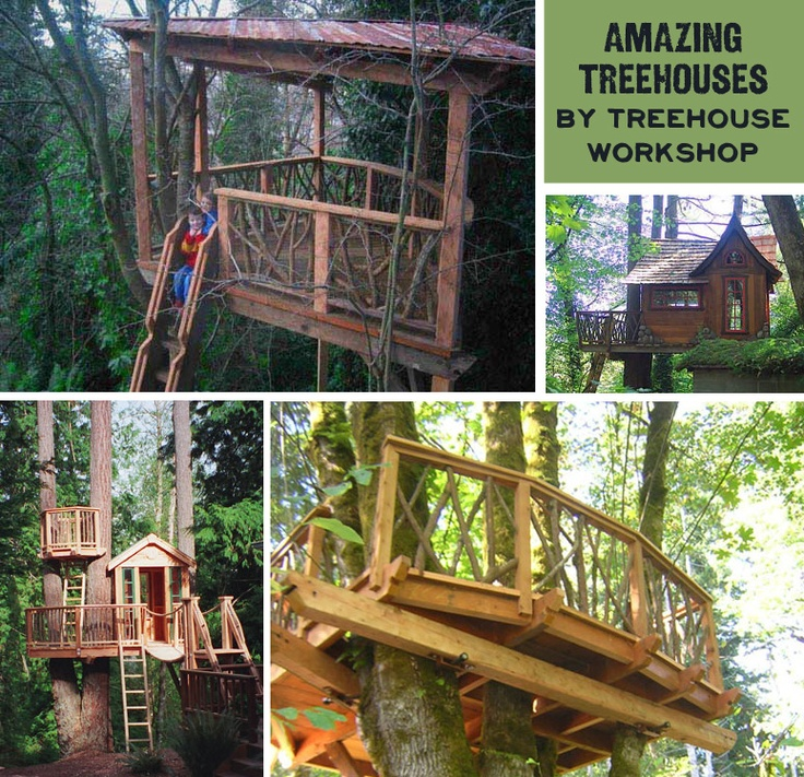 Really Cool Tree Houses 102 best cool treehouses images on pinterest | architecture