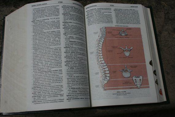Taber Cyclopedic Medical Dictionary / Dictionnaire illustré /