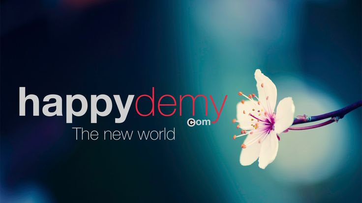 HAPPYDEMY - Promo