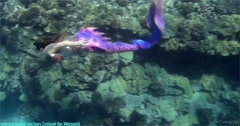 Lyrique the Mermaidfacebook