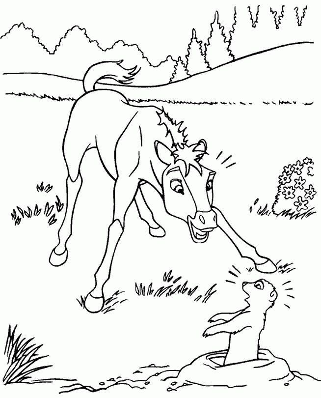 spirit ausmalbilder malvorlagen  malvorlagen tiere
