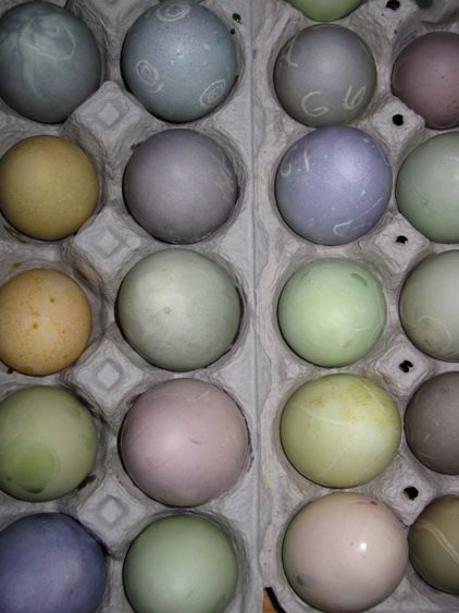 Guest Post: Natural Easter Egg Dyes - 100 Days of Real Food