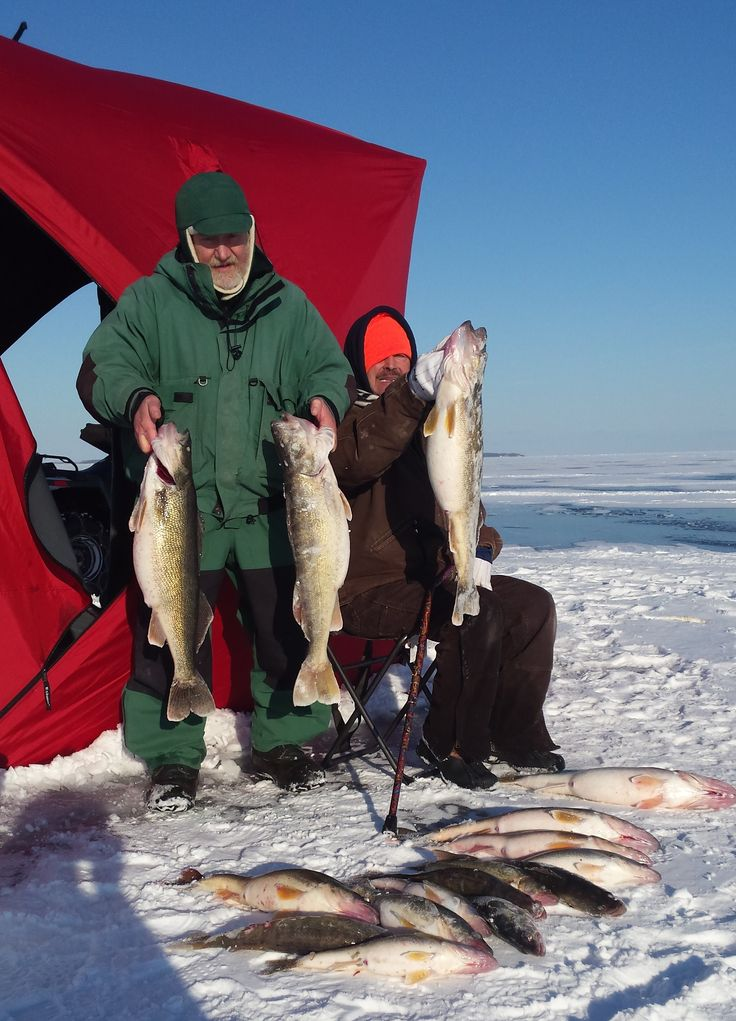 1000 images about all about ohio on pinterest for Ice fishing for walleye