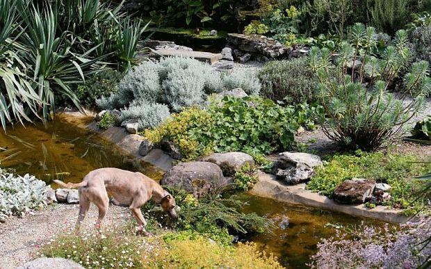 Rock garden at Doddington Place, Kent