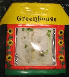 Make Your Own Greenhouse 2nd Grade Art Pinterest