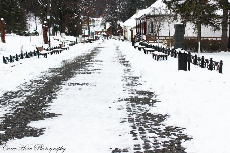 #winter #park