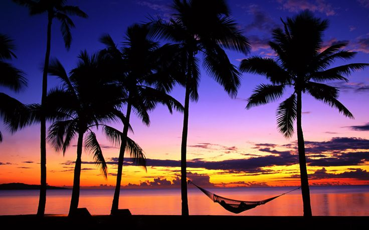 My paradise, nappin in my hammock on a tropical beach at sunset.