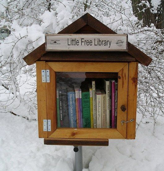 Tiny House Libraries, So cute!