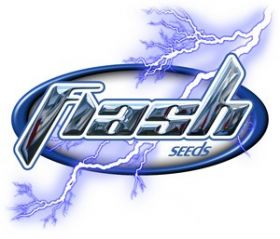 Bubble Hash SuperAuto Feminised Seeds