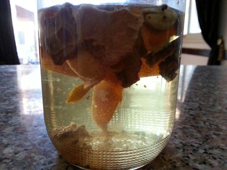 Чай из апельсиновых и гранатовых корочек с добавлением кардамона и мускатного ореха