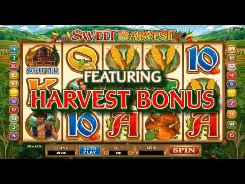 Spielautomat Casino Land