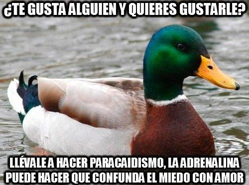 109 Consejos del Pato Consejero que te pueden servir - Taringa!