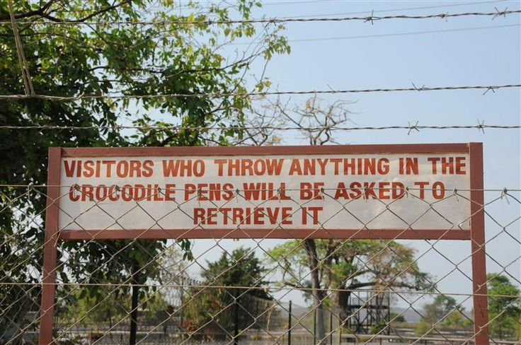 Visitors who throw anything in the crocodile pens will be asked to retrieve it.