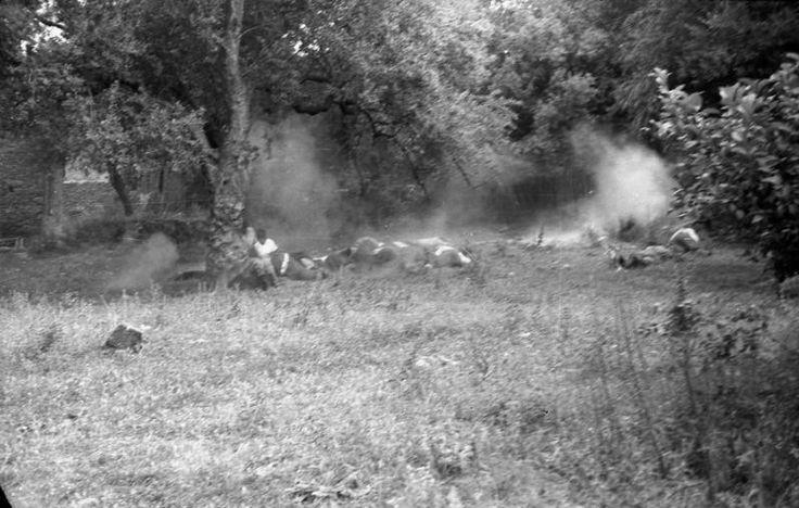 """[...] Σαράντα χρόνια όμως αργότερα, με το φωτογραφικό φακό του υπολοχαγού Βανς Πήτερ Βαίξλερ, που απαθανάτισε με ψυχραιμία τα γεγονότα... ξαναζωντανεύει η θυσία των 25 πολιτών απ΄΄ο το Κοντομαρί (Βλ. Βάσος Π. Μαθιόπουλος, Εικόνες Κατοχής, Φωτογραφικές μαρτυρίες από τα γερμανικά αρχεία για την ηρωική αντίσταση του ελληνικού λαού, εκδόσεις """"Τα Νέα"""", σελ. 182)."""