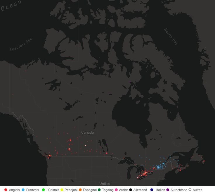 The Dot Map of Canadian Languages 41