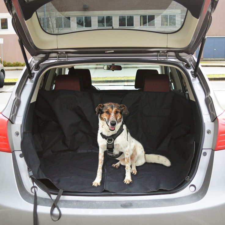 Take your dog anywhere with the PetsN'all Pet Car Seat Cover. It gives your dog a comfortable place to sit and keeps your seats clean   Aspectek