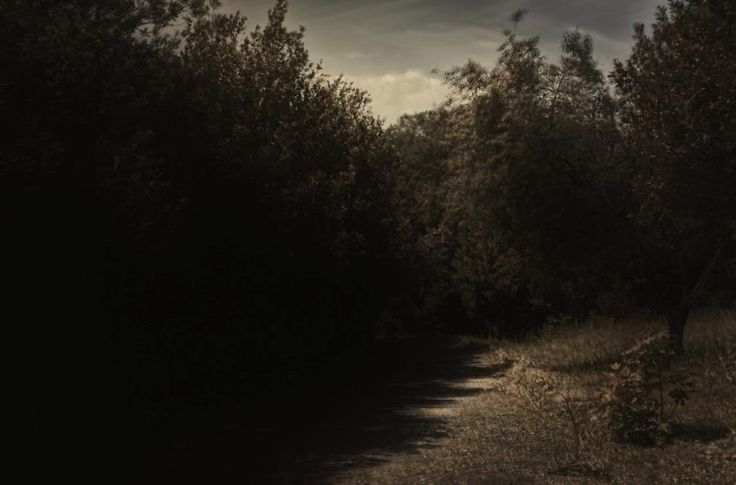 Doria Panphilj #nature #landscape