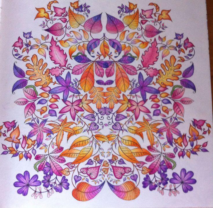 Adult Coloring Books Colouring Joanna Basford Johanna Secret Garden Pencil Art 1 Bugs Enchanted Forest