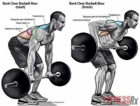 Bent over BB row