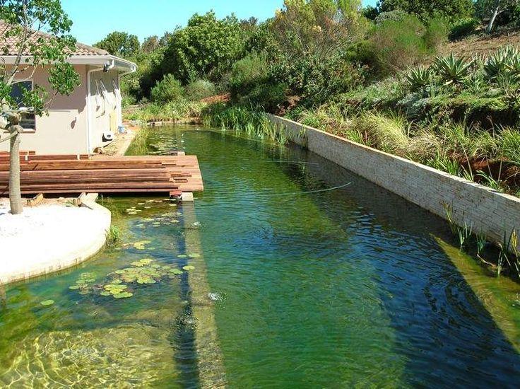 1000 id es sur le th me bassins de jardin sur pinterest tangs mare de carpes ko et tangs d - Bassin jardin bois reims ...