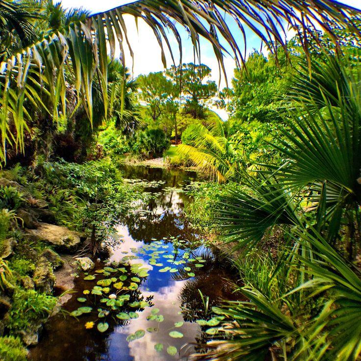 Mounts Botanical Garden in West Palm Beach, Florida. Adriana Abarca, Your Take