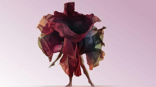 Dynamic Blooms on Vimeo