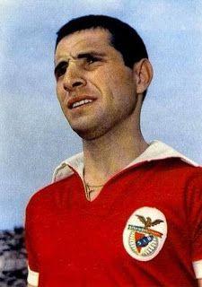 Cruz foi um dos melhores laterais esquerdos portugueses da década de 60. Com excepção do ano de retirada, em que jogou no PSG, representou um único clube, o Benfica, pelo qual disputou as cinco finais europeias que o clube atingiu nos anos 60, conquistou 8 títulos de campeão e 4 Taças de Portugal. O seu currículo na selecção não é tão rico, com apenas 11 internacionalizações, tendo integrado a convocatória para o Mundial 1966, embora não tivesse jogado.