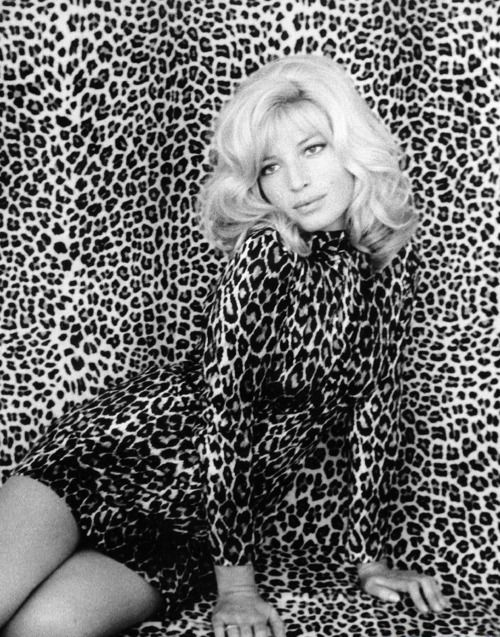 «If Monica Vitti's only claim to fame was starring in Michelangelo Antonioni's L'Avventura (one his his best films) she'd still be awesome for her sense of camouflage here».