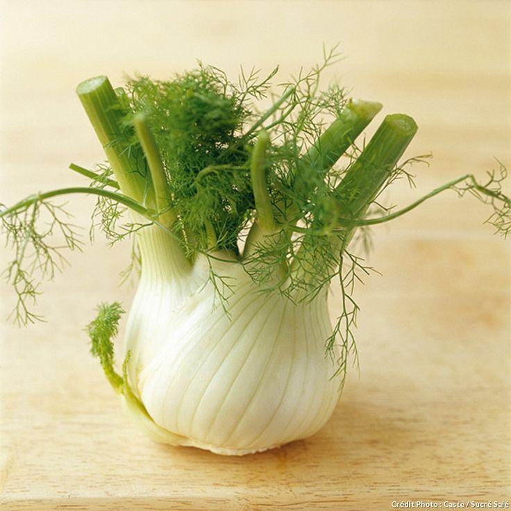 Comment cuisiner le fenouil ? Découvrez comment cuisiner le fenouil de multiples façons avec Régal. Fenouil braisé, en salade ou en carpaccio ; inspirez-vous de nos conseils.
