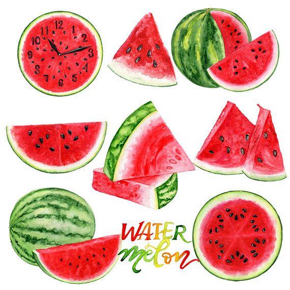 Watermelon Clip Art Summer Clipart Watercolor Fruit Clip Art