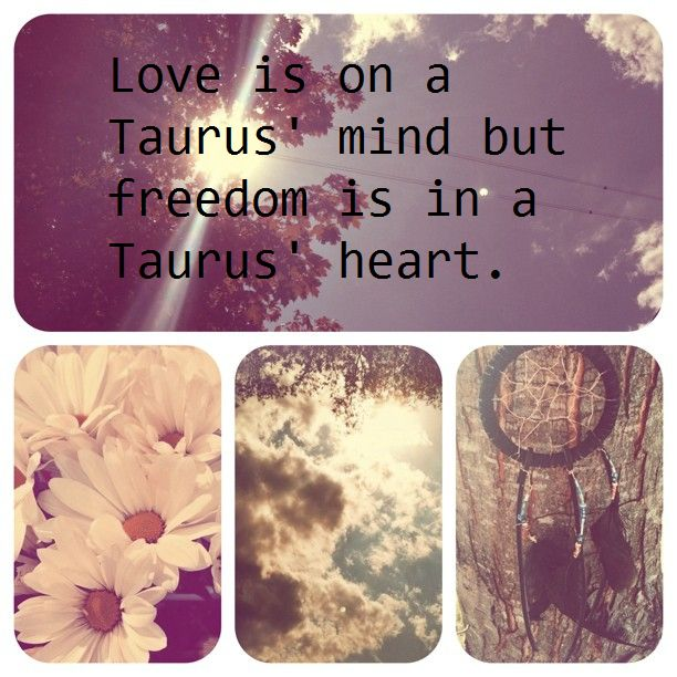This is so true its not even funny.. Taurus