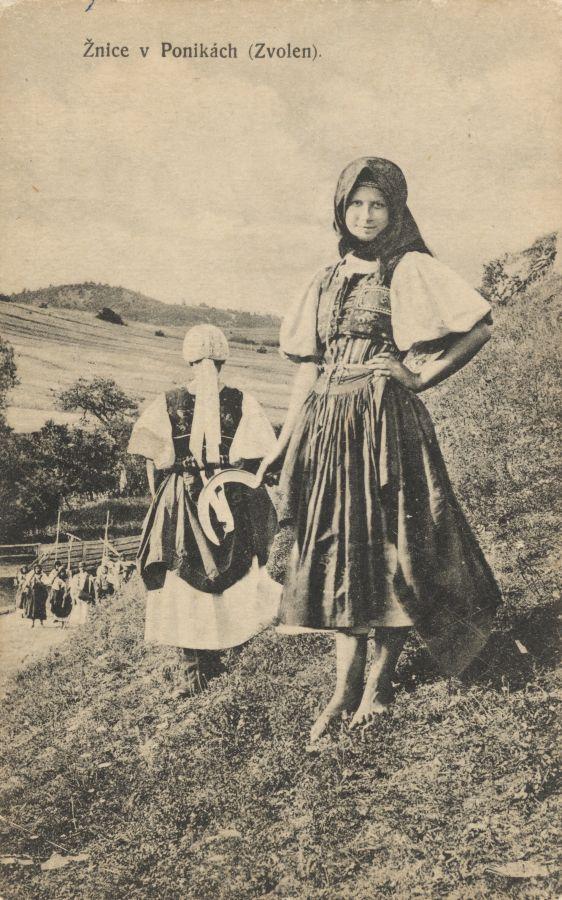 Pavol Socháň: Žnice v Ponikách (Zvolen) 1892-1913, Slovakia