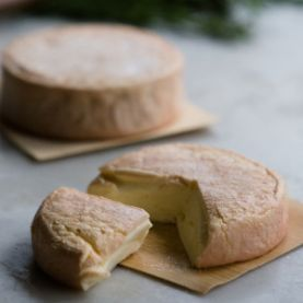 Bruny Island Cheese :: meet the cheeses