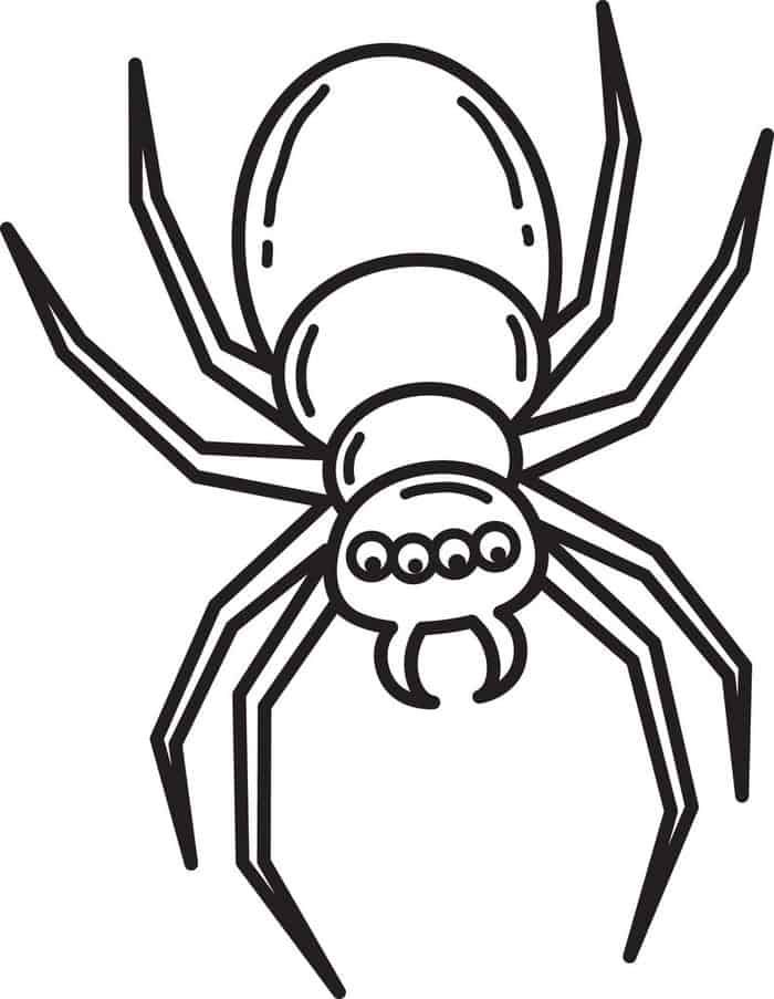Spider Coloring Pages For Kids Spider Coloring Page Free Halloween Coloring Pages Coloring Pages For Kids