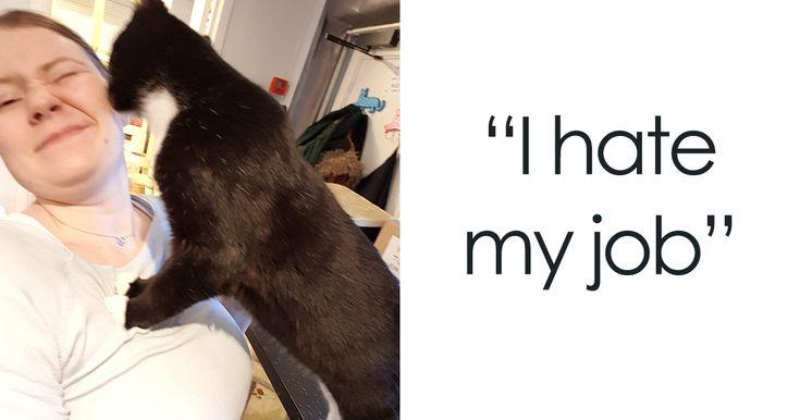 15 Gründe, warum ich meinen Job hasse Gelangweilter Panda   – Kitty!!