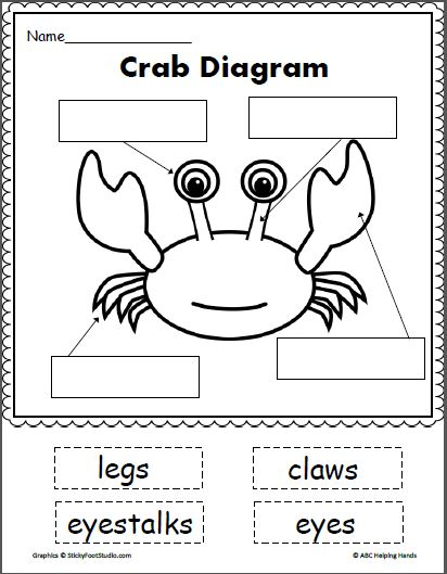 738 Best Ocean Lesson Plans Images On Pinterest Classroom Ideas Literacy And Navy Life