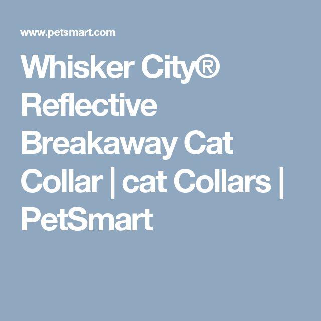 Whisker City® Reflective Breakaway Cat Collar | cat Collars | PetSmart