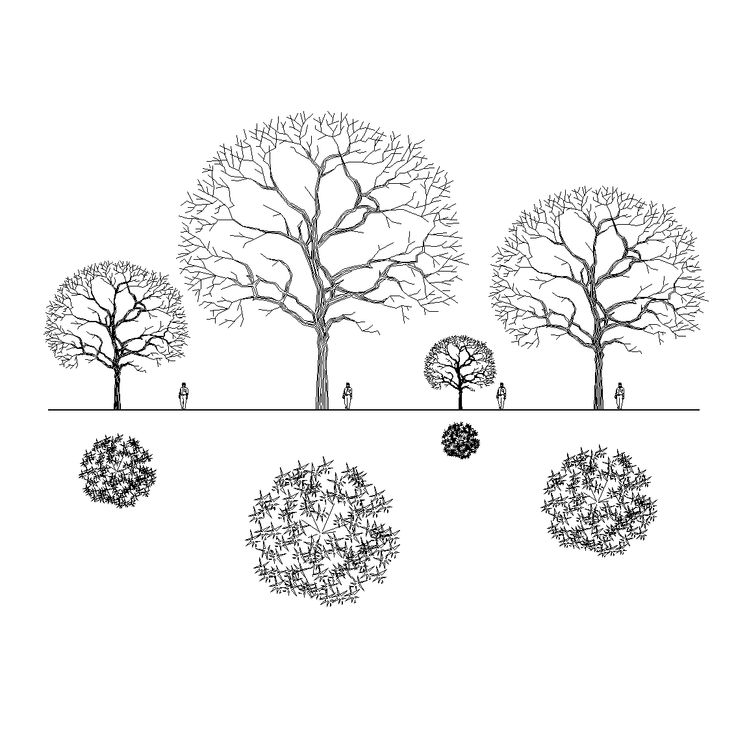 trees in architectural plans - Pesquisa Google