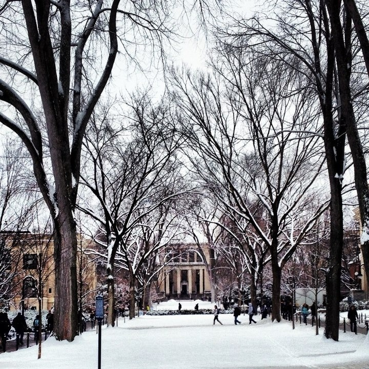 best state college pa images state college  penn state university pattee paterno library beautiful snow love my campus <