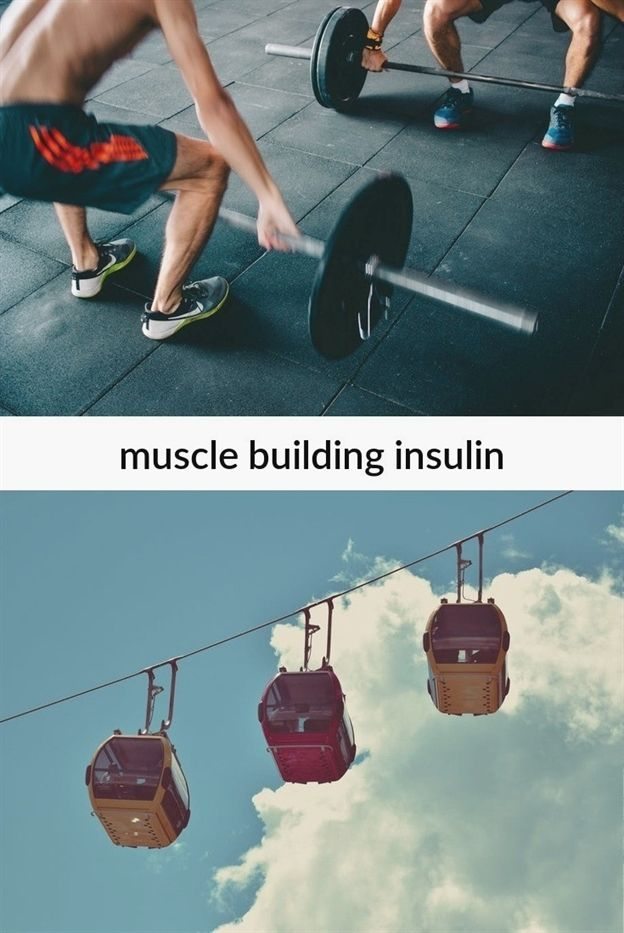 muscle building insulin_253_20181102082232_51 #muscle gain myths