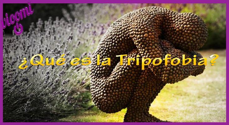 Qué es la tripofobia
