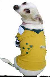 Aussie Dog Shirt - oi, oi, oi!!